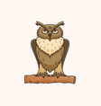 owl drawing vector image