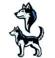 siberian husky dog mascot set vector image vector image