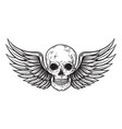 skull and wings in engraving style vector image vector image
