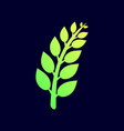 tree branches with leaves icon plant vector image vector image