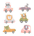 animals in cars vector image