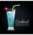 cocktail tropical poster bar icon vector image