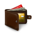 Leather open wallet with credit card money bills vector image