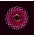 pink flower geometrical sign vector image