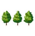 set of three summer tree vector image vector image