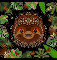 sloth head face portrait brown fur cartoon style vector image