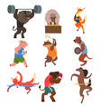 animals doing exercise in the gym fitness and vector image vector image
