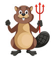 beaver with devil spear on white background vector image vector image