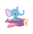 blue elephant flying on little plane wild animal vector image