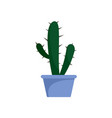 cactus icon flat style vector image vector image