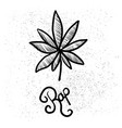 cannabis marijuana leaf or hemp pot flat vector image
