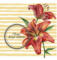 flower background with two beautiful lilies vector image vector image