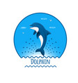 leaping dolphin vector image vector image
