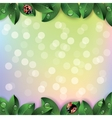 Red ladybugs and green leaves vector image vector image