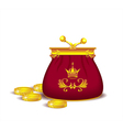 Royal purse with coins vector image