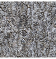 seamless texture of a bark of a trunk of a fir vector image