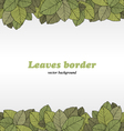 Borders of foliage vector image