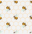abstract honey print seamless pattern with cute vector image vector image