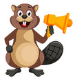 beaver with megaphone on white background vector image vector image