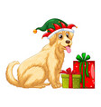 Christmas theme with cute dog and presents vector image vector image