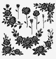 collection of roses vector image vector image