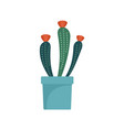 flower cactus pot icon flat style vector image vector image