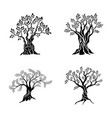 olive trees silhouette icon set isolated on white vector image