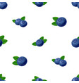 seamless blueberries pattern 3d realistic vector image