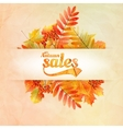 Autumn sale poster with leaves on a old paper vector image