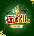 Christmas Sale 20 Percent typographic background vector image vector image
