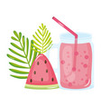 fresh juice fruit jar summer icon vector image