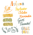 Hand drawn cute autumn lettering set vector image