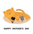 happy mothers day cat feeding kittens mom kitty vector image