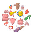 internal human organs icons set cartoon style vector image vector image