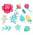 set of various floral icons on vector image