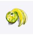 sketch apple and banana vector image vector image