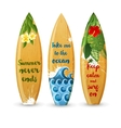 wooden surfboards with type designs vector image vector image