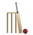 Cricket Bat Ball and Wicket vector image