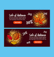 autumn sale background with falling autumn leaves vector image vector image
