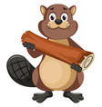 beaver holding log on white background vector image