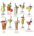 famous cocktails vector image