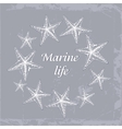 Gentle Decorative sea card with starfishes in vector image vector image