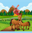 horse at the farm landscape vector image vector image