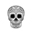 mexican sugar skull with floral ornament day of vector image vector image