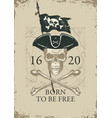 pirate banner with skull cocked hat vector image