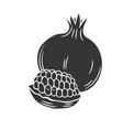 pomegranate glyph icon vector image