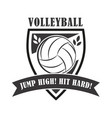 volleyball badge vector image vector image