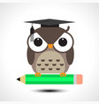 Wise owl with pencil isolated on white background