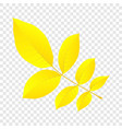 yellow autumn leaf icon flat style vector image vector image