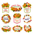 autumn time icons of fall leaf pumpkin vector image vector image
